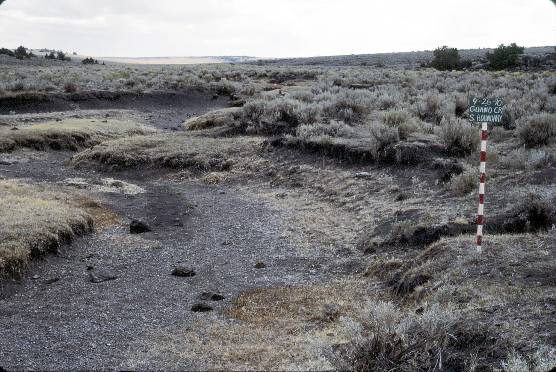 Guano Creek, BLM - Oct. 1990