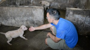 DxE co-founder and lead investigator Wayne Hsiung at the Yulin dog meat farm, April 2016. Photo: DxE.